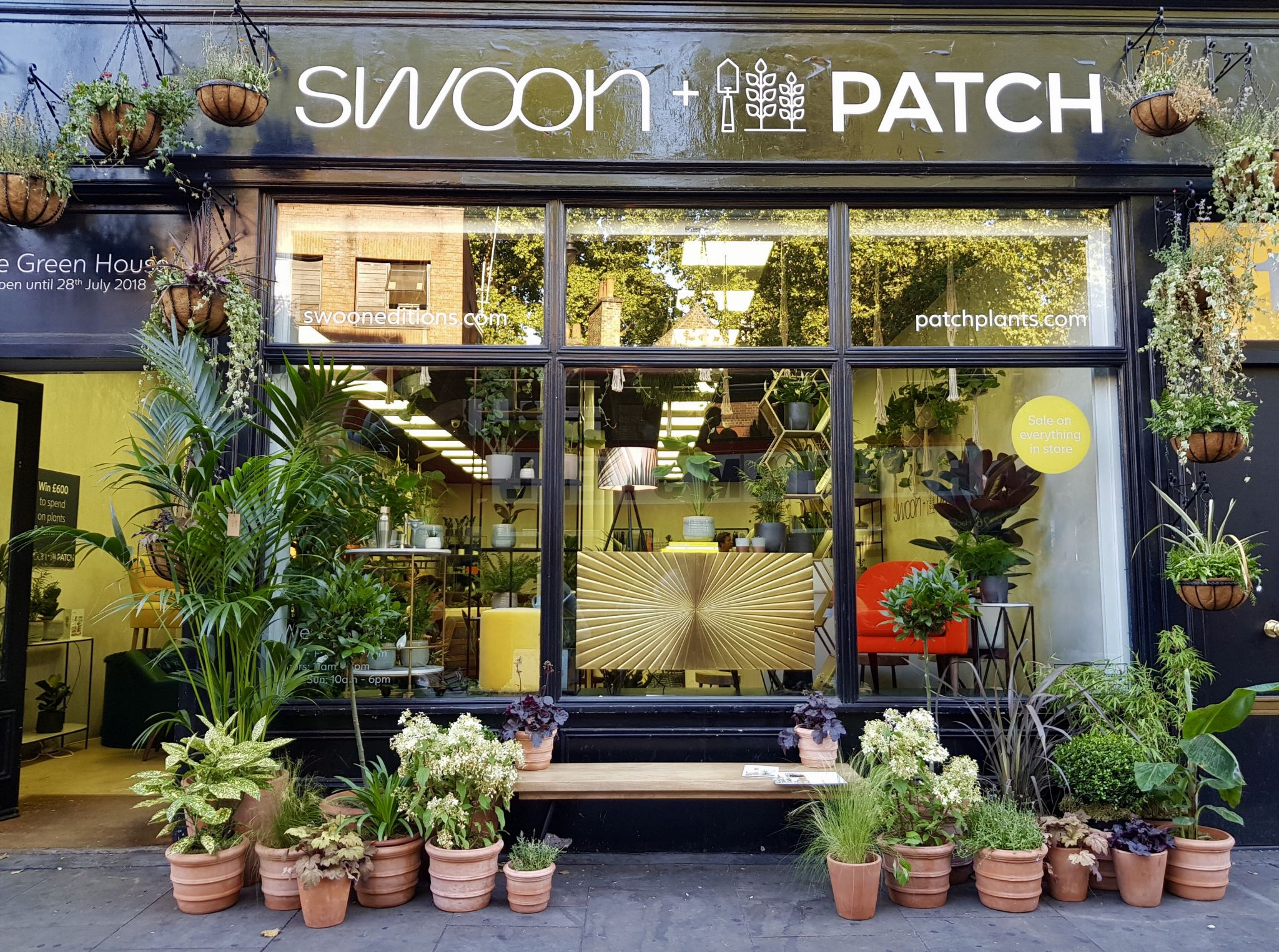 Swoon Edition x Patch Plants pop up