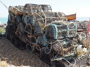 Lobster traps Deal