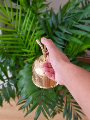Misting a parlour palm